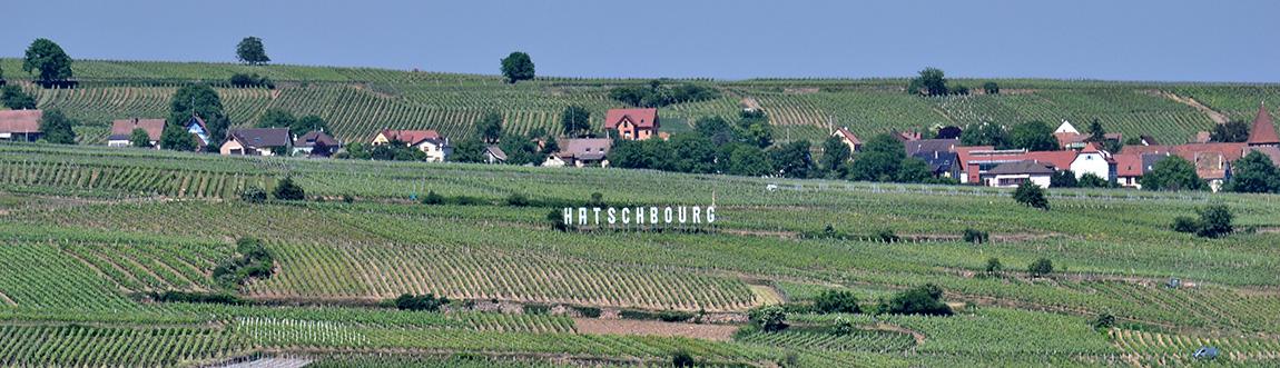domaine-hatschbourg